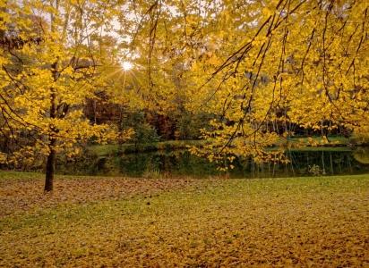 Herbst – Badesee Reischach