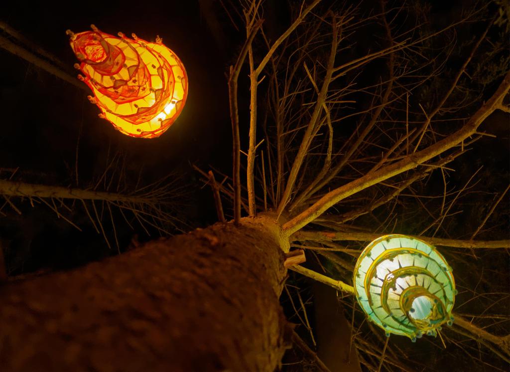 Lichter im Baum