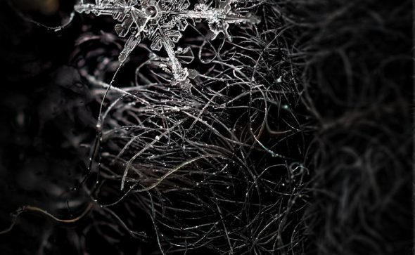 Snowflake Stack