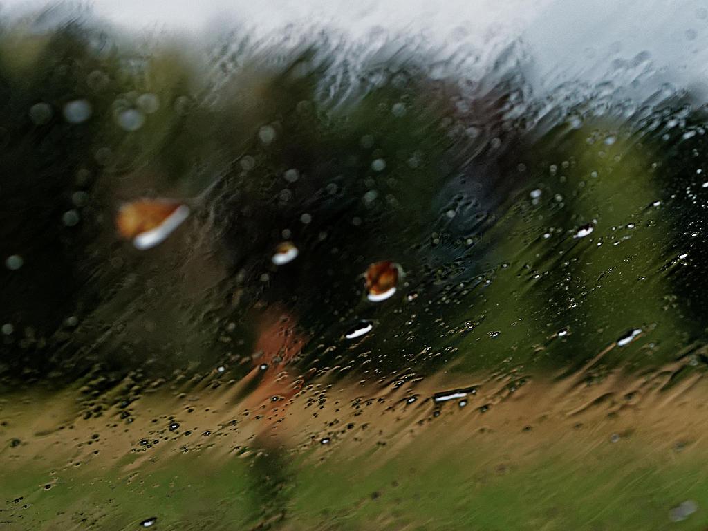 Durch den Regen (through the rain)